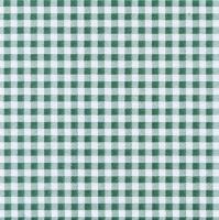 50 Tissue Servietten 33x33 cm - Vichy Verde