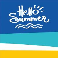 20 Servietten 33x33 cm - Hello Summer