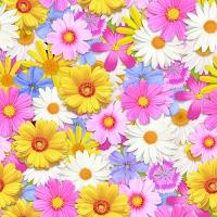 20 Servietten 33x33 cm - Daisies Mix