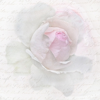 Servietten 33x33 cm - Pink Rose Letter