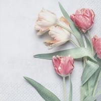 Servietten 33x33 cm - Tulipe