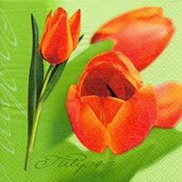 Servietten 24x24 cm - Tulipe