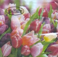 Servietten 24x24 cm - Pink & Violet Tulips