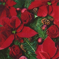 Servietten 33x33 cm - Poinsettia with Fir