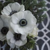 Servietten 33x33 cm - White Anemones