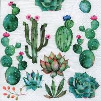 Servietten 33x33 cm - Cactus & Succulents