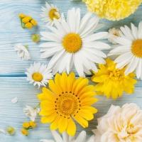 Servietten 33x33 cm - Brillantes Flores de Jardin