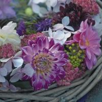 Servietten 33x33 cm - Flores Purpura en Guirnalda