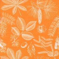 Servietten 33x33 cm - Forêt Feuilles & Fruits honey / PLAN