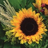 Servietten 33x33 cm - Sunflower with Straw