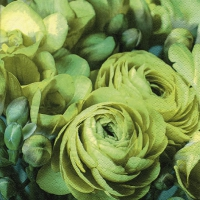 Servietten 33x33 cm - Freesia & Persian Buttercup green