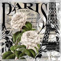 Servietten 33x33 cm - Paris 1900