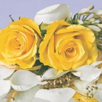 Servietten 33x33 cm - Blütenblätter von Rosa