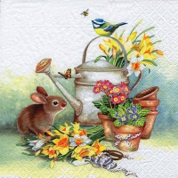 Servietten 33x33 cm - Bunny with Watering Can