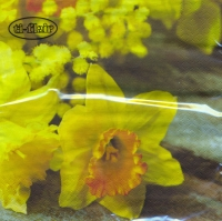 Lunch Servietten Daffodil on wooden Table