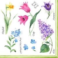 Servietten 33x33 cm - Collezione Floreale Primavera