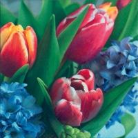 Servietten 33x33 cm - Tulpen & Hyazinthe