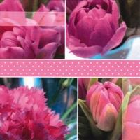 Servietten 33x33 cm - Tulpen Rosen rosa