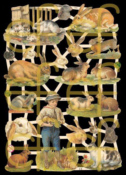 Glanzbilder mit Silber-Glimmer - Viele, viele Hasen