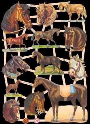 Glanzbilder - Pferde