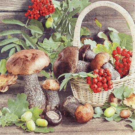Servietten 33x33 cm - Fall Season