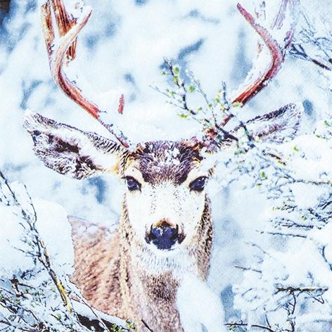 Servietten 33x33 cm - Stag in Snow