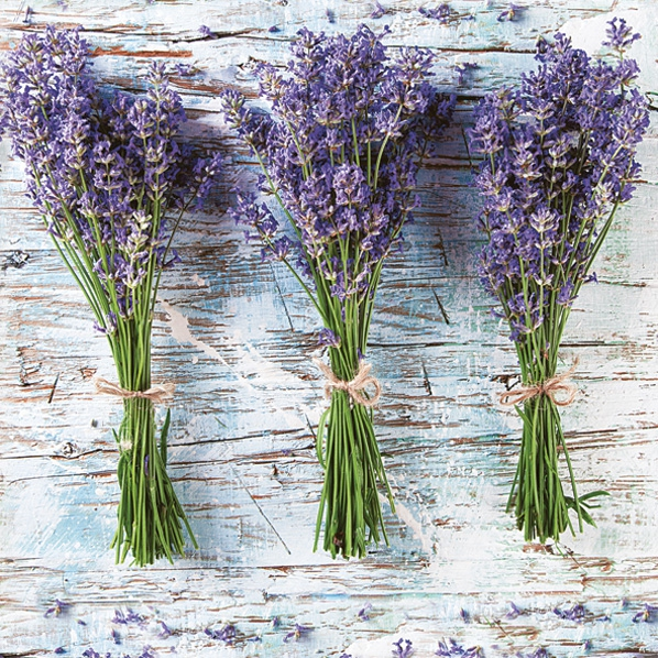 Servietten 33x33 cm - Three Bunches of Lavender