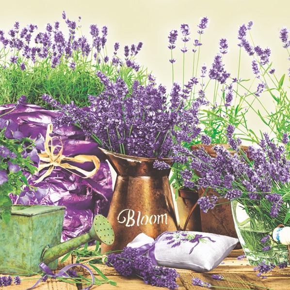 Servietten 33x33 cm - Blooming Lavender Cream