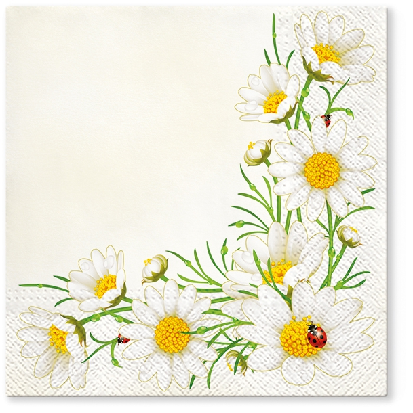 Servietten 33x33 cm - Bunch of Marguerites (cream)