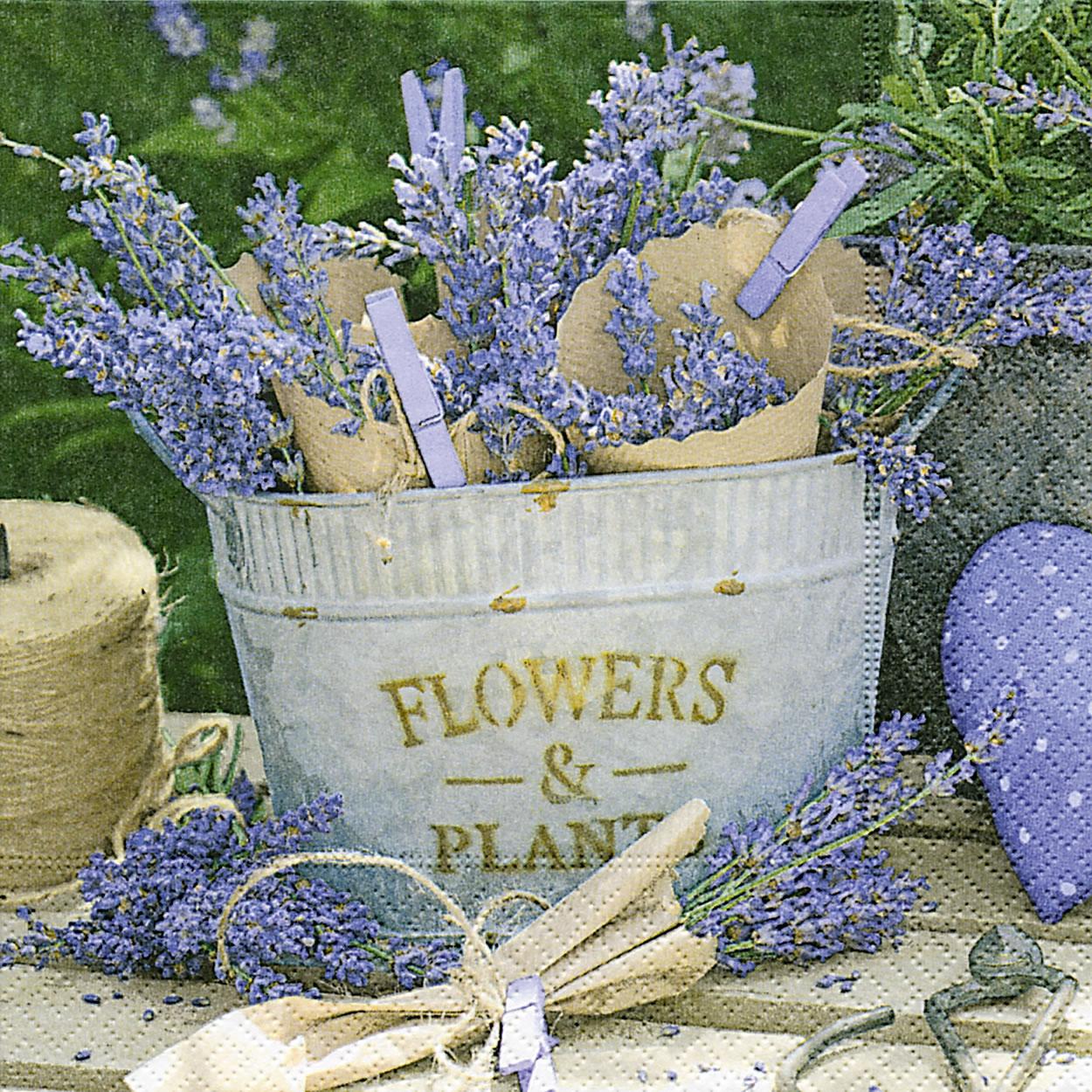 Servietten 33x33 cm - Lavender decoration