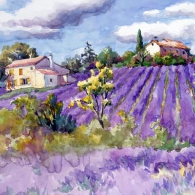 Servietten 33x33 cm - Lavendelfelder für immer