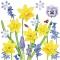 Servietten 33x33 cm - Narcissus Love