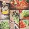 Servietten 33x33 cm - Fresh Vegetables
