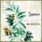 Servietten 33x33 cm - Huile d` Olive