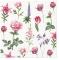 Servietten 33x33 cm - Boons of Garden